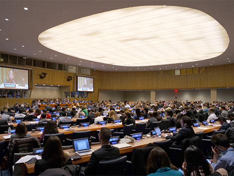 Reuniones del ECOSOC (NNUU, Nueva York)