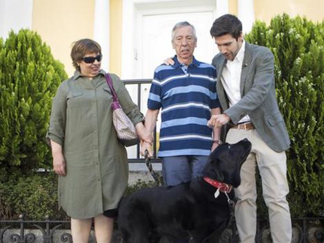 Lass, el perro labrador que guía a su dueño con Alzheimer