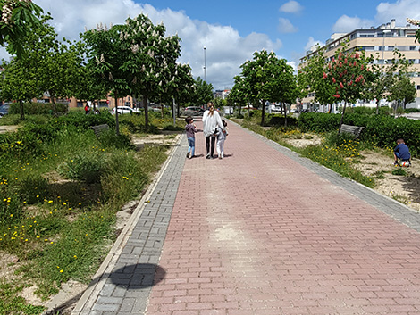 De paseos, rejas y culpables