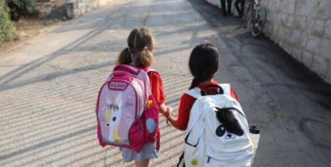 «Los retrasos en el proceso de divorcio generan un daño irreparable en los niños»