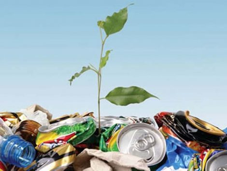 Encuesta de Hogares y Medio Ambiente
