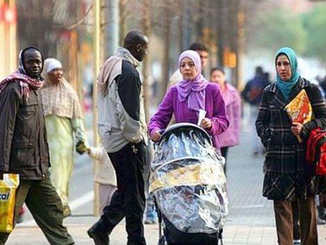 Cifras de Población a 1 de julio de 2013 y Estadística de Migraciones en el primer semestre de 2013