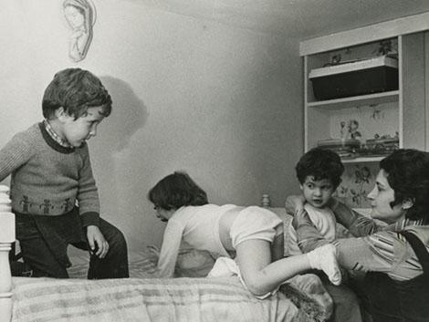 La repoblación de hermanos medianos en España