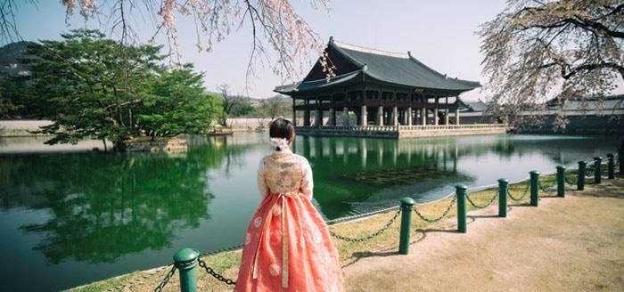 Honjok, el movimiento surcoreano que reivindica la soledad como estilo de vida