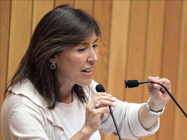 La Xunta propone una red de voluntarios para ayudar a los padres a cuidar a sus hijos