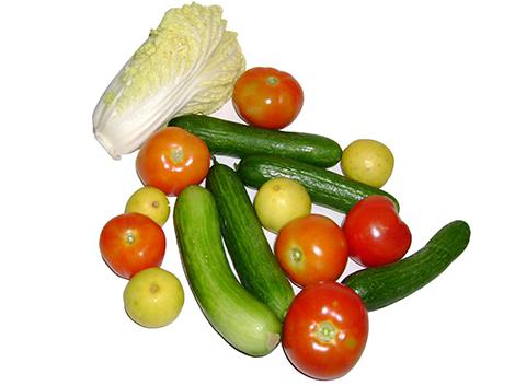 23. Concepto de dieta mediterránea:¿un grupo de alimentos saludables,una dieta o una panacea. publicitaria?