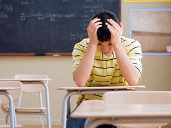 """The Family Watch reclama una reforma educativa """"mucho más ambiciosa"""""""